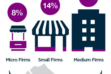 Dubai SMEs in Numbers - Statistics and Trends Infographic