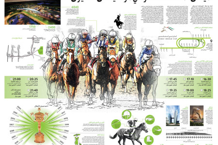 Dubai World Cup 2012 Infographic