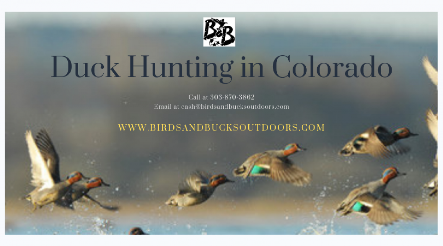 Duck Hunting in Colorado Infographic