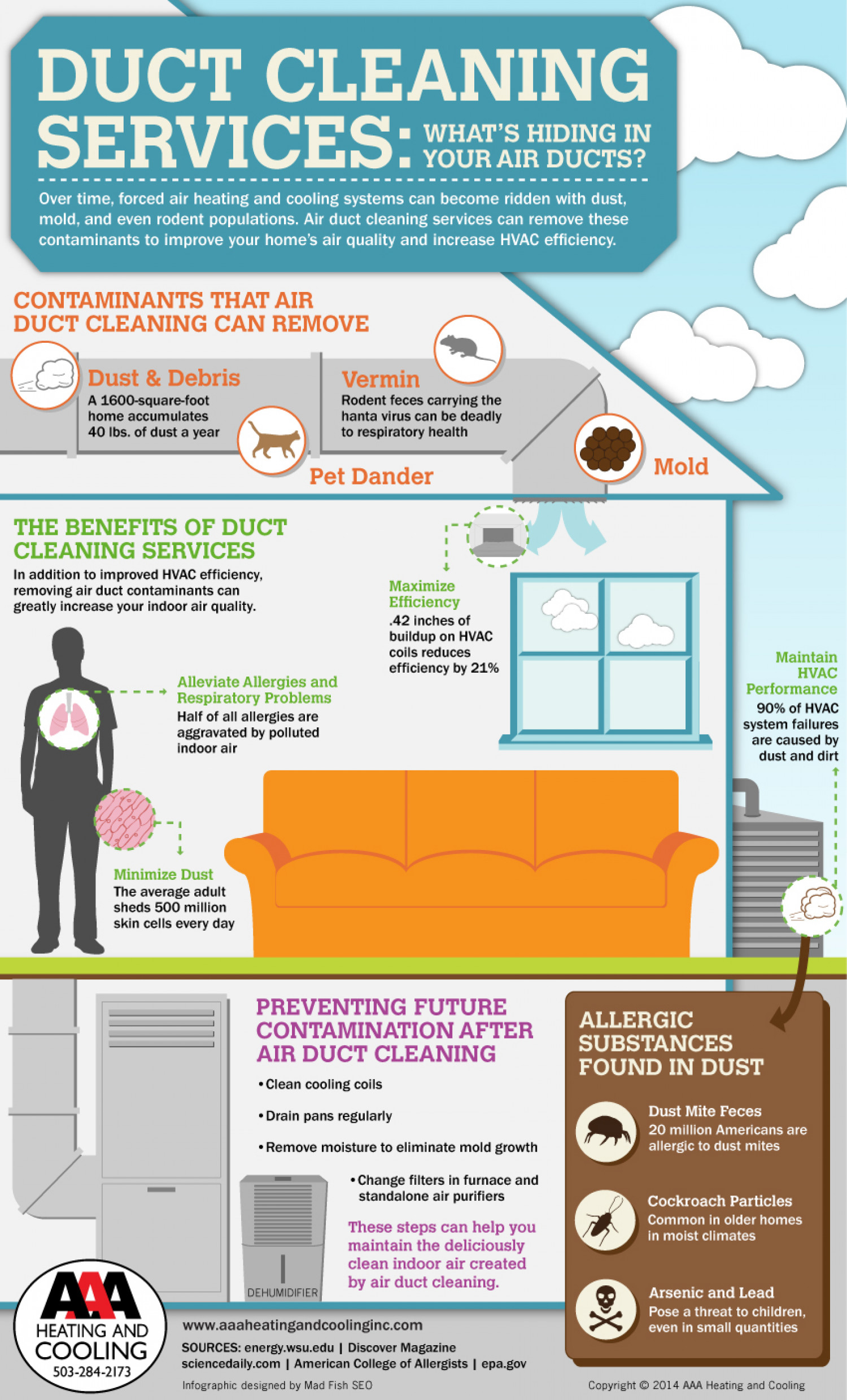 Duct Cleaning Services: What's Hiding in Your Air Ducts? Infographic