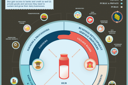 East Africa Dairy Development Hub Infographic