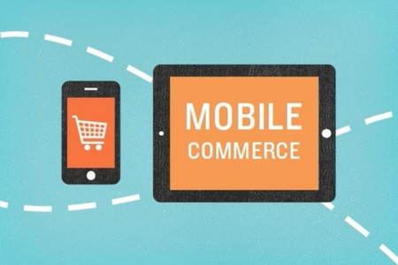 Ecommerce Tips: Mobile Commerce - Application or Mobile Website?  Infographic