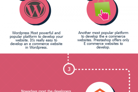 Ecommerce Website Development in Punjab Infographic