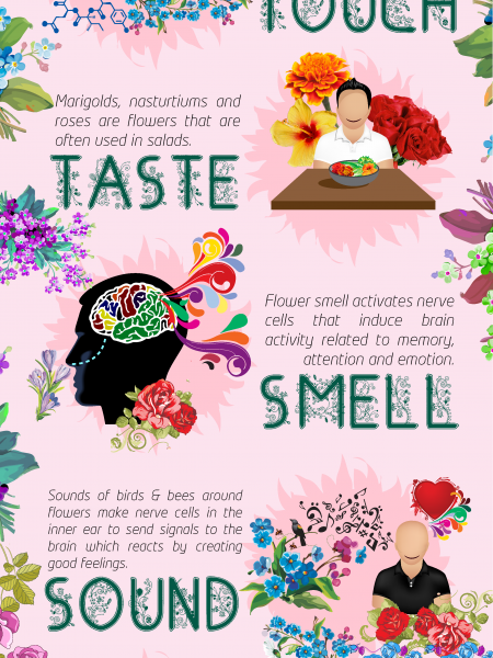 Effect of Flowers on our Senses Infographic
