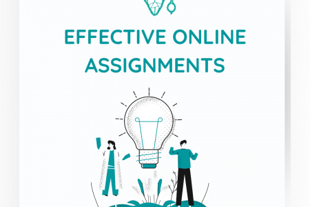 Effective Online Assignment Service Infographic