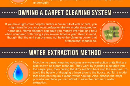 Effective Ways of Cleaning Your Carpet Infographic