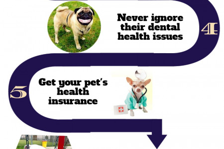 Effective Ways to Keep Your Dog Healthy Infographic