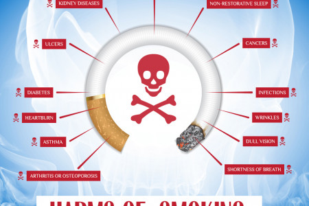 Effects Of Smoking On Your Health Infographic