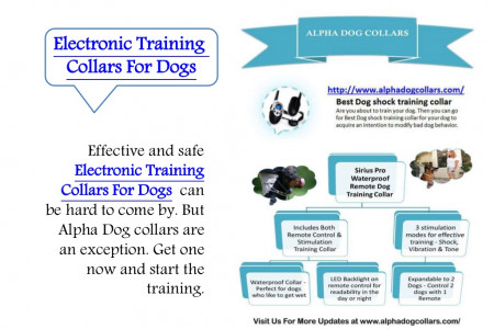 Electronic training collars for dogs Infographic