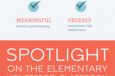 Elementary Montessori Education 101 Infographic