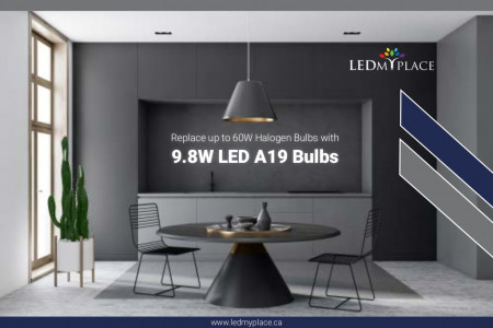 Eliminate Harmful Lighting With Eco-Friendly A19 LED Bulb Infographic