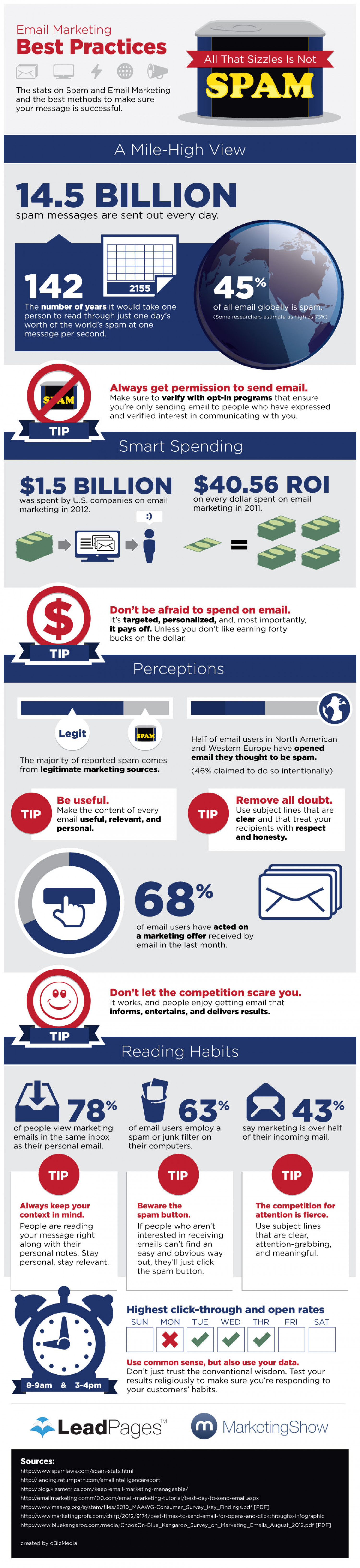 Email Marketing: All That Sizzles Is Not Spam Infographic