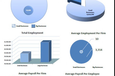 Employment: Small vs Large Businesses Infographic