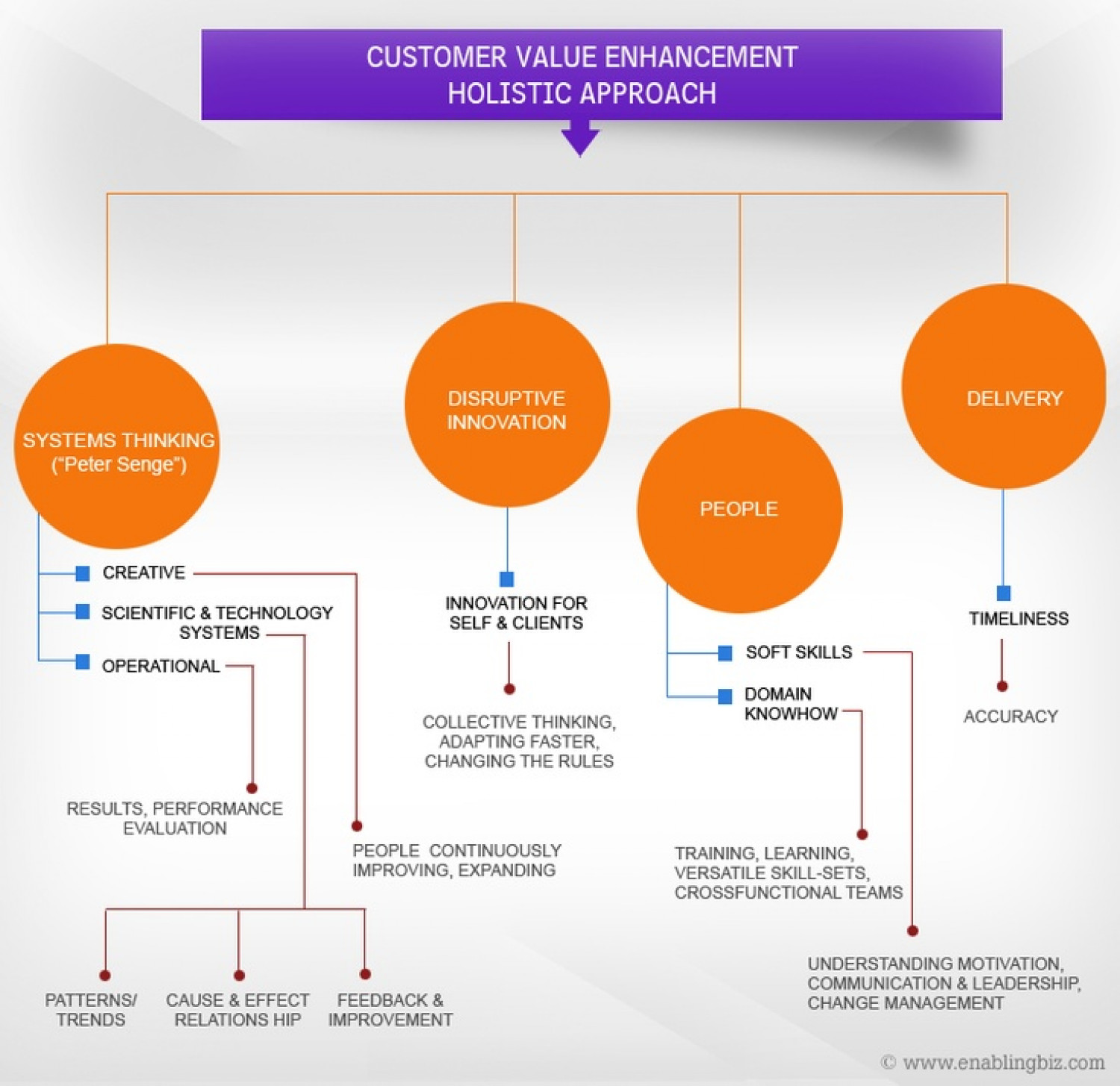 EnablingBiz Customer Value Enhancement Infographic