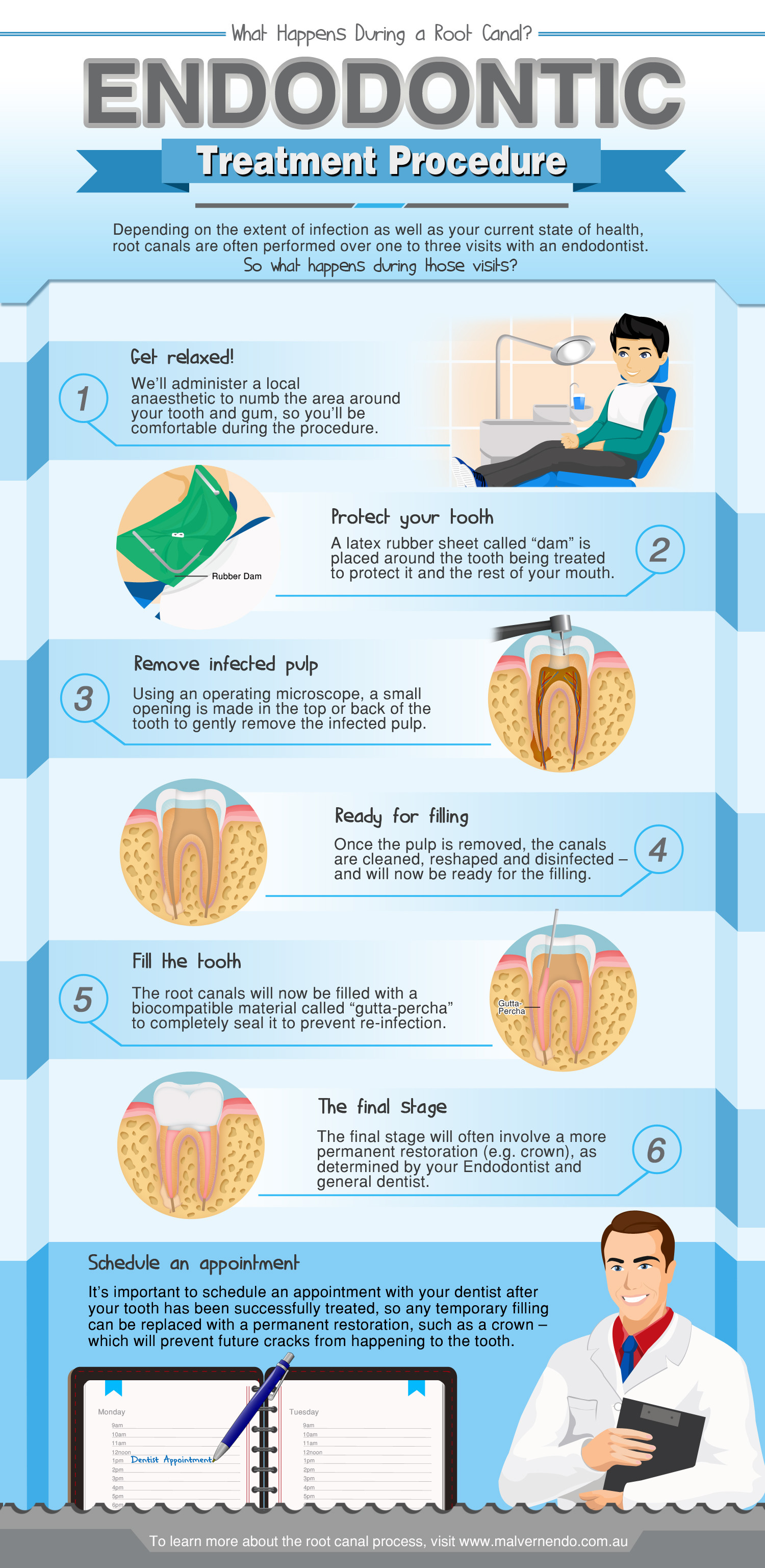 Endodontic Treatment Procedure: What Happens During a Root Canal? Infographic