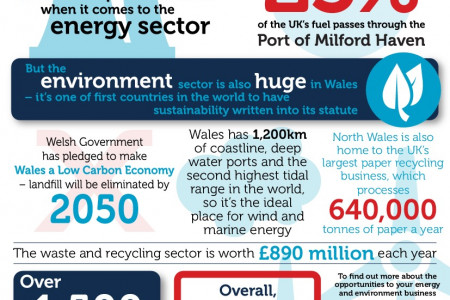 Energy and Environment in Wales Infographic