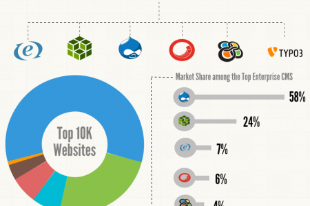 Enterprise CMS Breakdown Infographic