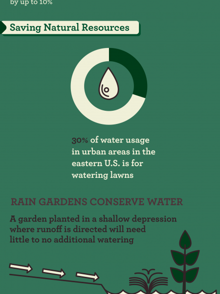 Environment: Going Green With Your Landscaping Infographic