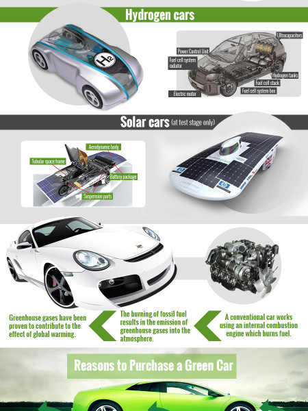 Environmentally Friendly Car Guide! Infographic