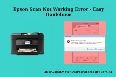 Epson Scan Not Working Error - Easy Guidelines Infographic