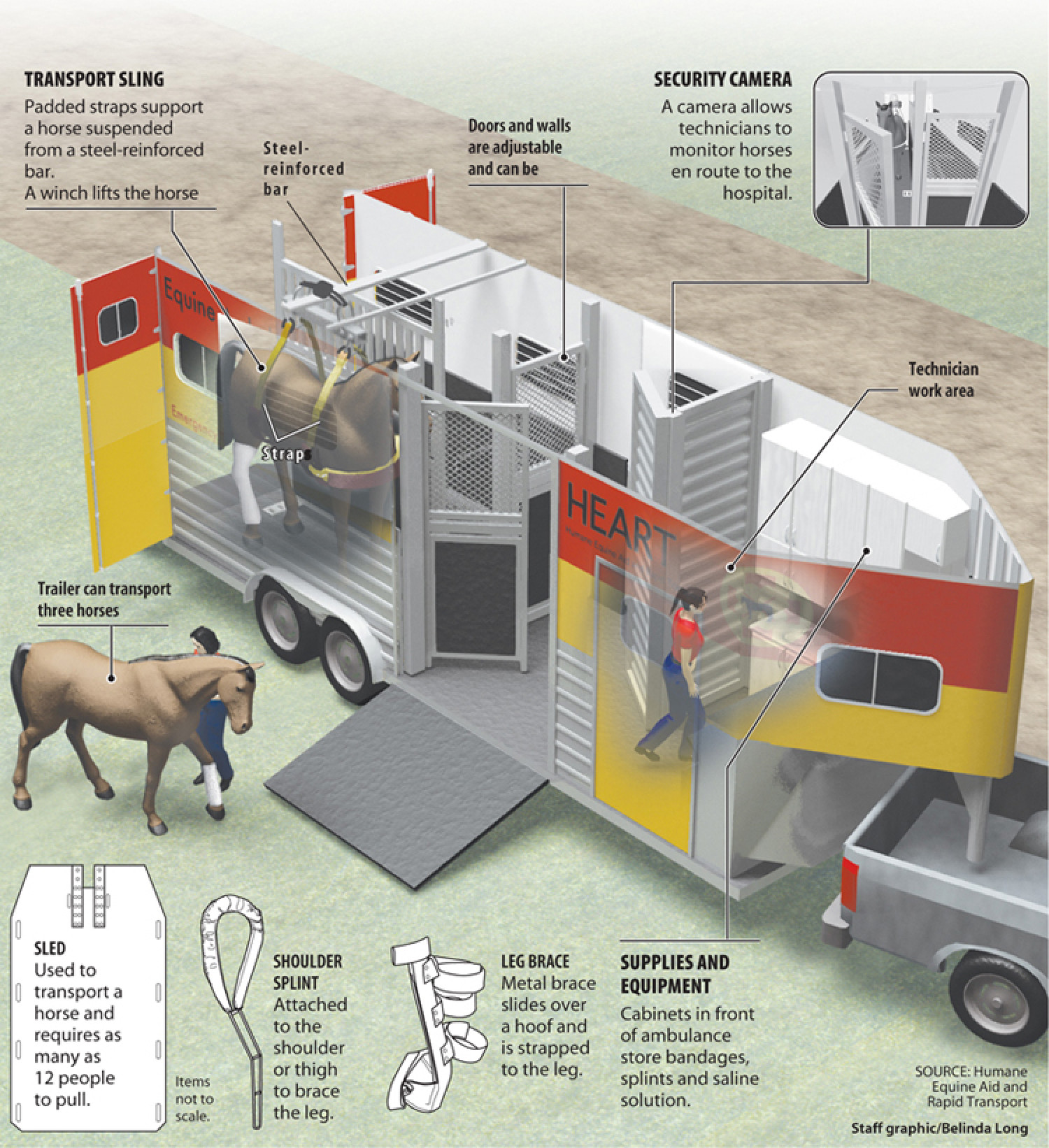 Equine ambulance Infographic