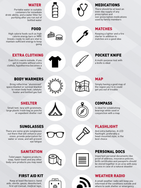 Essential Survival Kit Infographic Infographic