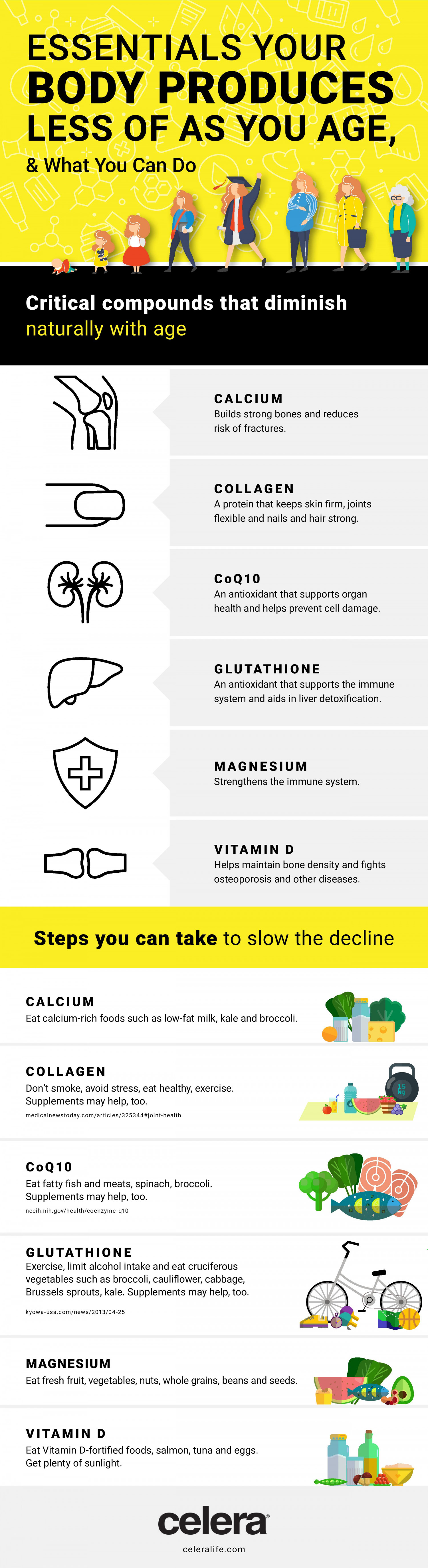 Essentials Your Body Produces Less Of As You Age & What You Can Do Infographic