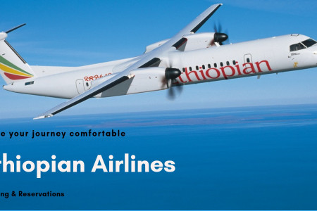 Ethiopian Airlines Flights: Ticket Booking & Reservations Infographic