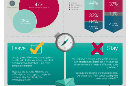 EU Referendum: What do UK business leaders feel about the EU? Infographic