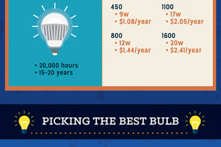 Eureka! Everything You Need to Know About Light bulbs Infographic