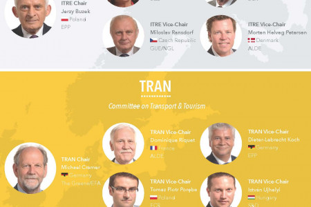 European Parliament Committee Chairs & Vice-Chairs 2014 Infographic