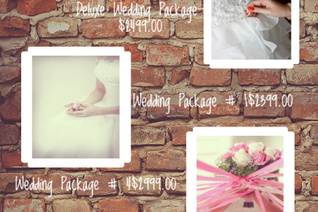 Evansville, Illinois Wedding Photographer Infographic