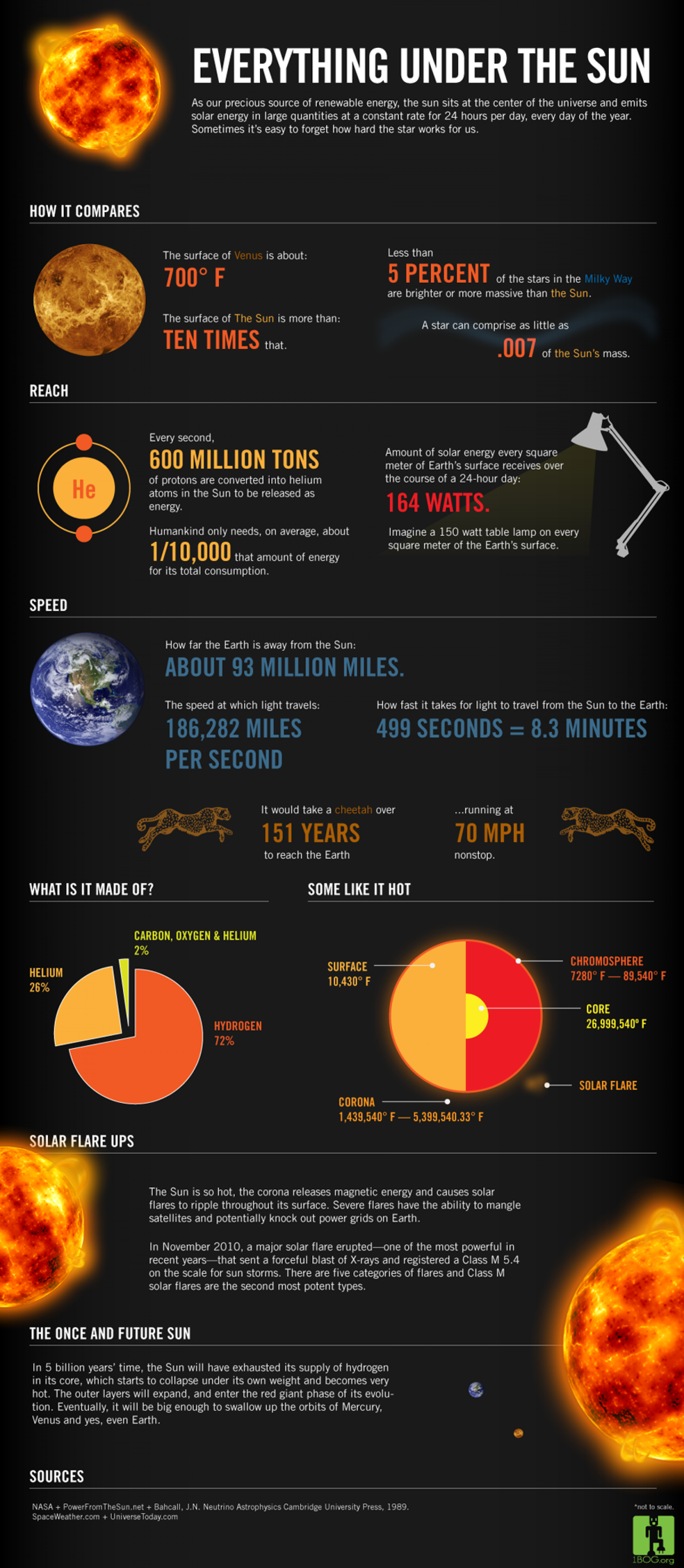 Everything Under the Sun  Infographic