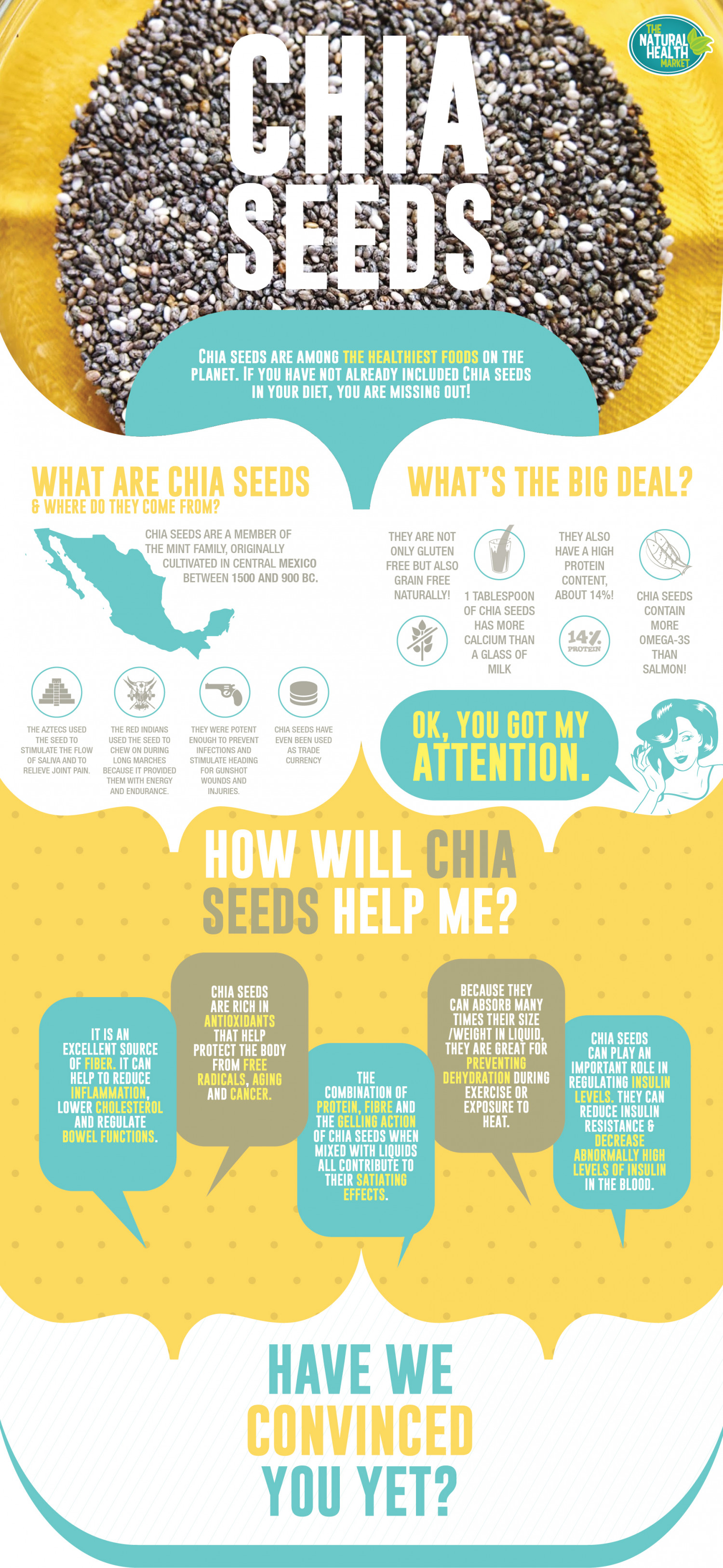 Everything You Need To Know About Chia Seeds Infographic