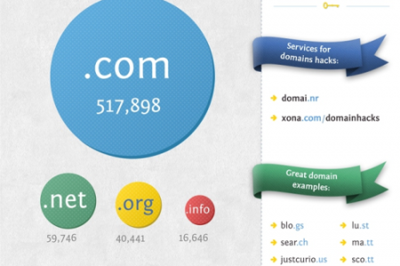 Everything You Need To Know About Domains Infographic