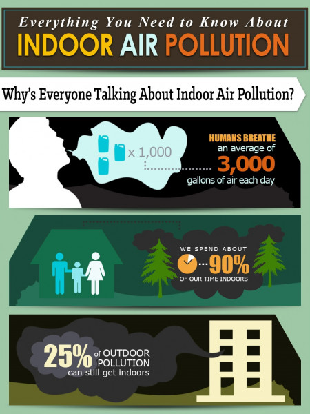 Everything You Need to Know about Indoor Air Pollution Infographic
