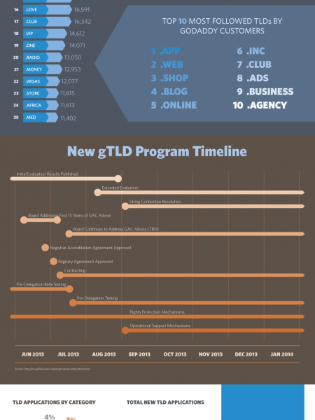 Everything you need to know about new top level domains Infographic