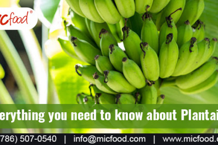 Everything you need to know about plantains Infographic