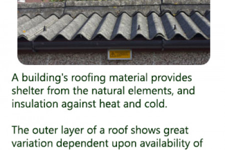 Everything You Need to Know About Roofing  Infographic