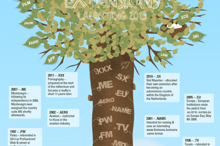 Evolution of Domain Names Infographic