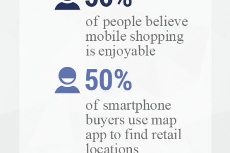 Excellent Ecommerce Ideas for the Year 2013 Infographic