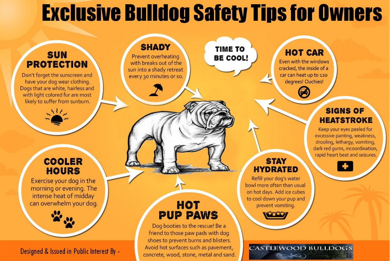 Exclusive Bulldog Safety Tips for Owners Infographic