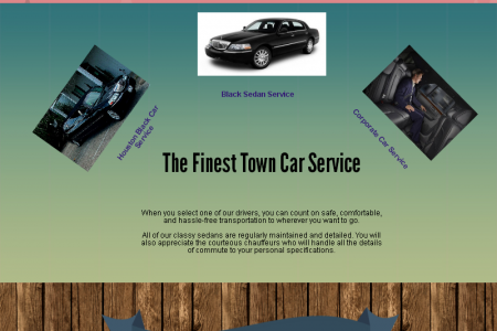 Executive Car Service Houston Infographic