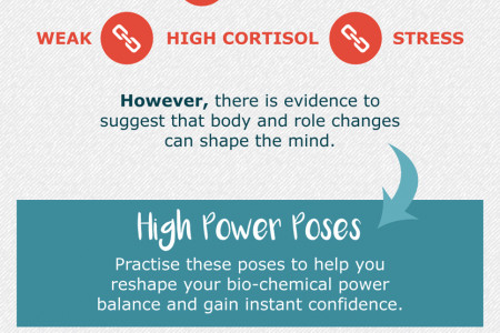 Expert's Guide To Body Language In Public Speaking Infographic