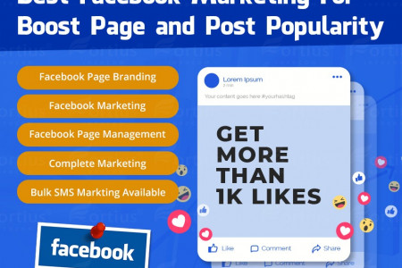Facebook Business Page Marketing From Fortius Infocom Infographic