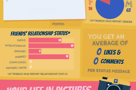 Facebook Profile Infographic