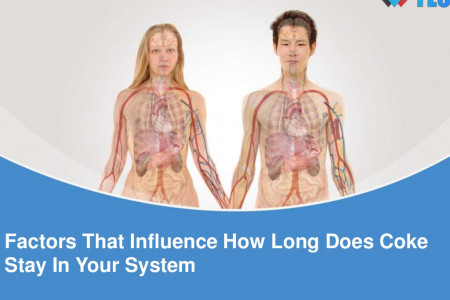 Factors That Influence How Long Does Coke Stay In Your System Infographic