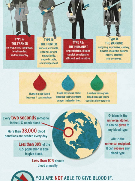 Facts About Blood  Infographic