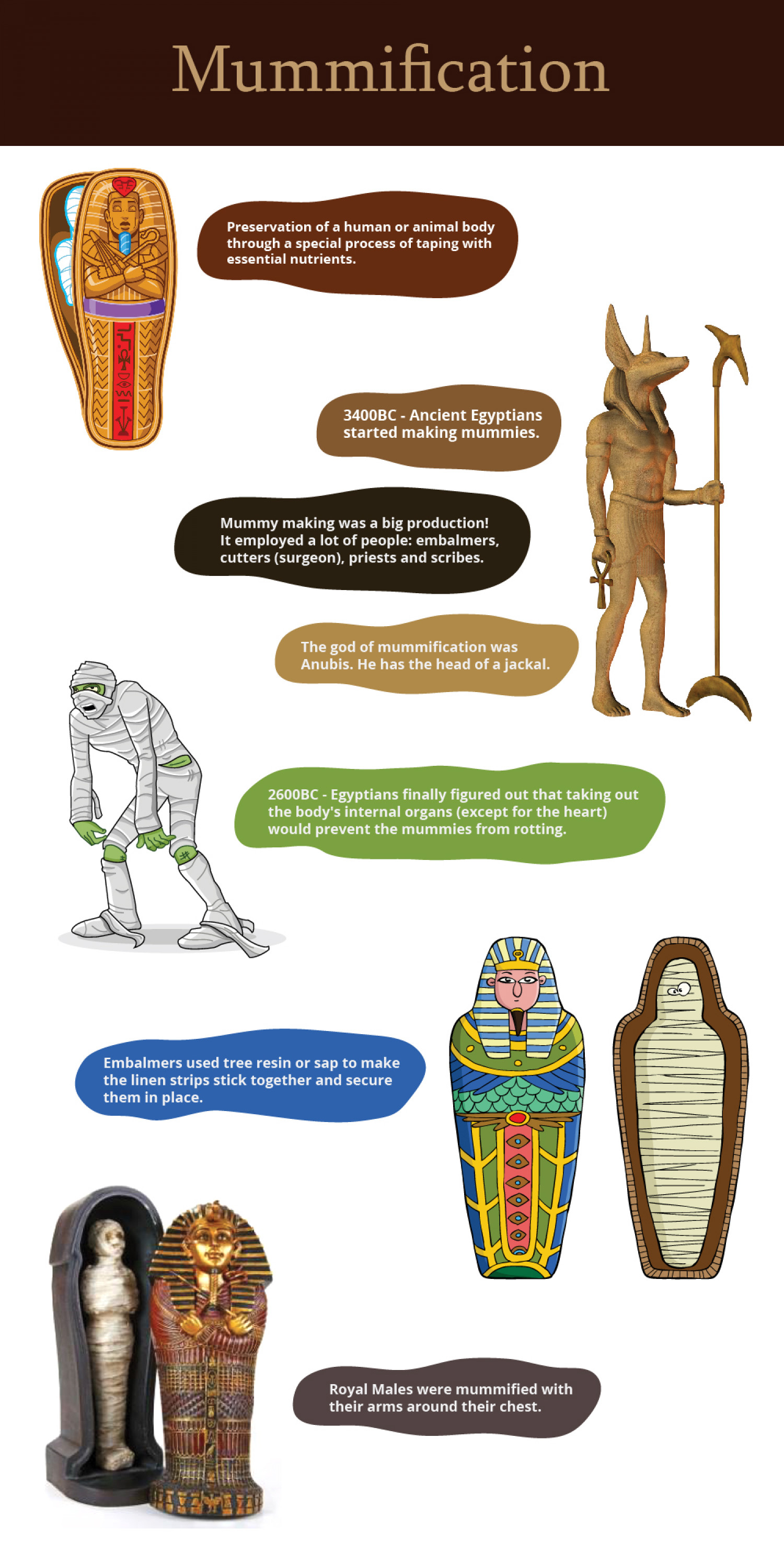 Facts About Mummification Infographic