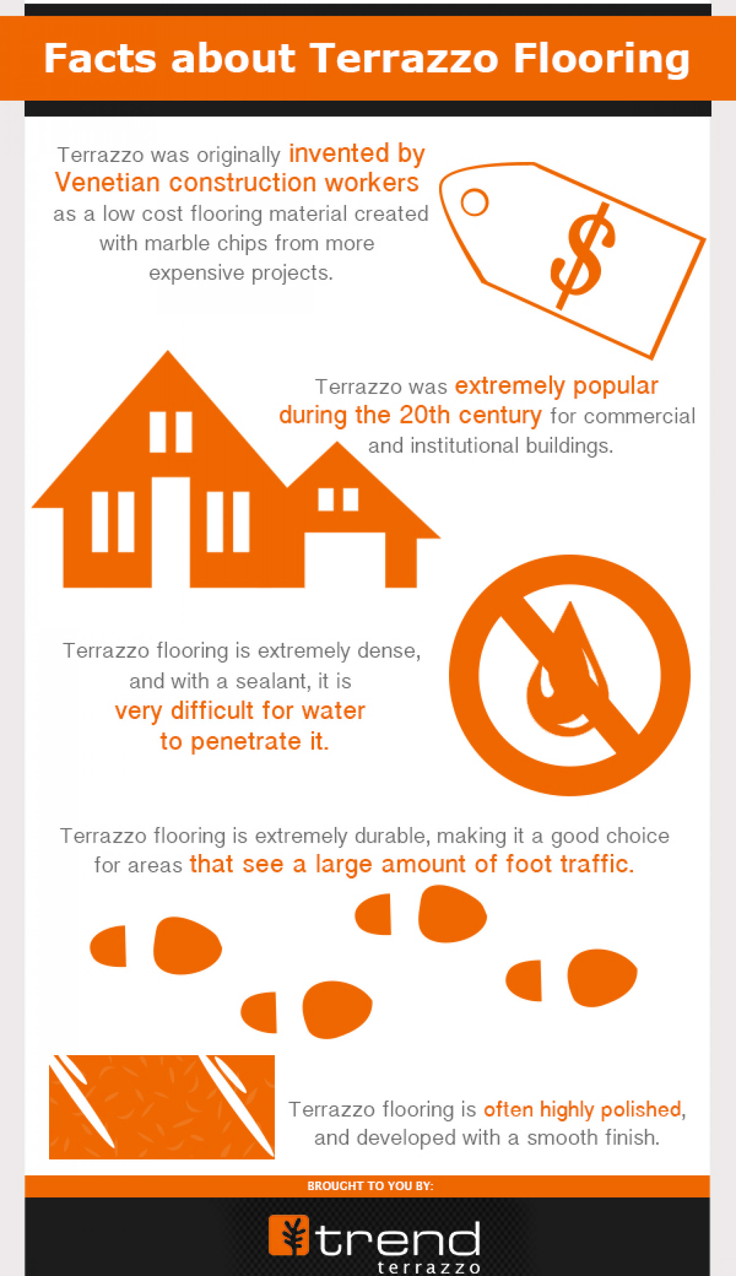 Facts About Terrazzo Flooring Infographic